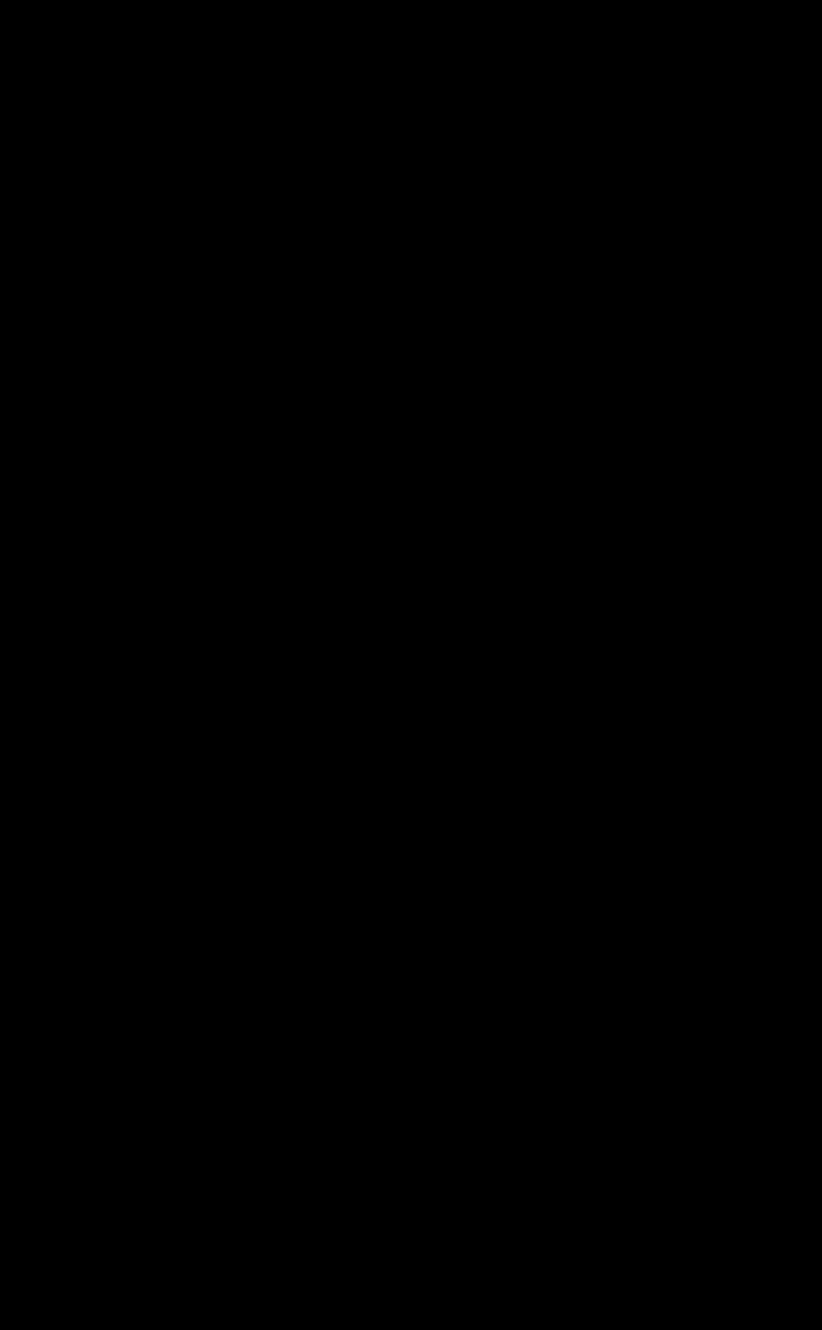 Spirale de Fibonacci gauche